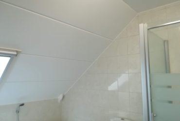 Plafond in betonnen welfsels afgewerkt met zijdeglanzende kwaliteitsverf, schimmelwerend.